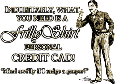 Indubitably, what you need is a FrillyShirt Personal Credit Cad!